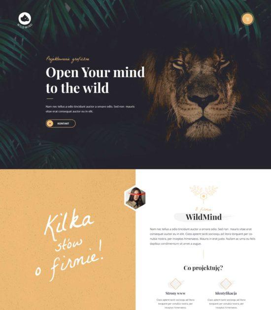 Strona internetowa typu portfolio - widok strony głównej